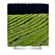 Between The Rows Shower Curtain
