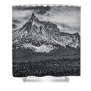 Big Cowhorn Shower Curtain
