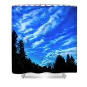 Big Sky And Trees Shower Curtain