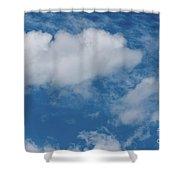 Big Sky, Little Bird Shower Curtain