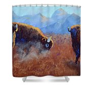 Big Thunder Shower Curtain