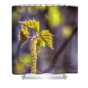 Birch Blooms Shower Curtain