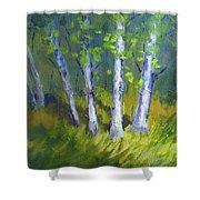 Birch Light Landscape Shower Curtain