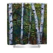 Birch Portrait II Shower Curtain