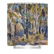 Birch Trees Along The Pond De Melle Shower Curtain