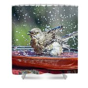 Bird In A Bath Shower Curtain