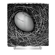 Birds Nest Black And White Shower Curtain by Edward Fielding