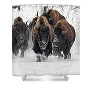 Bison Bulls Run In The Snow Shower Curtain
