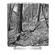 Black And White Mountain Trail Shower Curtain