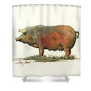 Black Iberian Pig Shower Curtain