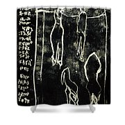 Black Ivory Issue 1b78a Shower Curtain
