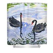 Black Swans - Soulmate Shower Curtain