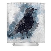 Blackbird Grunge Edition Shower Curtain