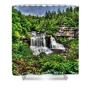 Blackwater Falls, Blackwater Falls State Park, West Virginia Shower Curtain