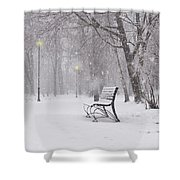 Blizzard In The Park Shower Curtain