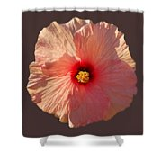 Blooming Hot Shower Curtain