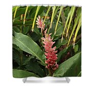 Blooming Plant Shower Curtain