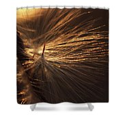 Blowing Shower Curtain by Michelle Wermuth
