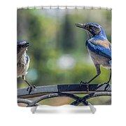 Blu And Blu2 Shower Curtain