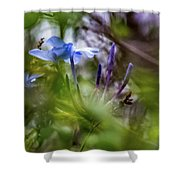 Blue And Green 2 Shower Curtain
