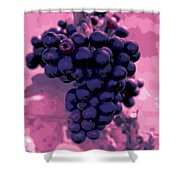 Blue Grape Bunches 6 Shower Curtain