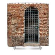 Blue Grid Doorway Shower Curtain