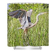 Blue Heron On The Rise Shower Curtain