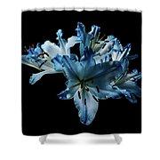 Blue Lilies Shower Curtain