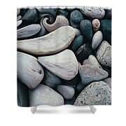 Blue Rock Garden Shower Curtain