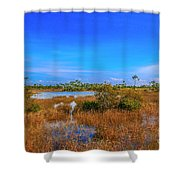 Blue Sky And Marsh Shower Curtain by Tom Claud
