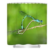 Bonds Of Love Shower Curtain