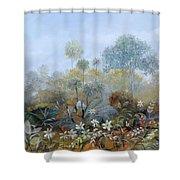 Boschetto Colorato Shower Curtain