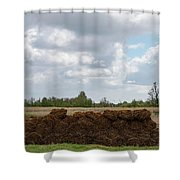 Bound Reeds Shower Curtain by Anjo Ten Kate