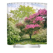 Spring Arrives At Daffodil Hill Shower Curtain