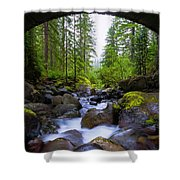 Bridge Below Rainier Shower Curtain