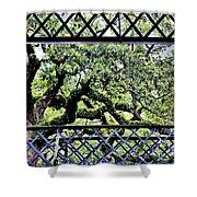 Bridge Through Live Oaks Shower Curtain