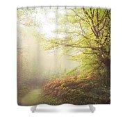 Broceliand Path Shower Curtain