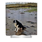 Brodie And Bass Rock Shower Curtain