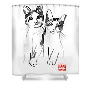 Brothers Cats Shower Curtain