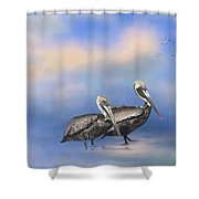 Brown Pelicans At The Shore Shower Curtain by Kim Hojnacki