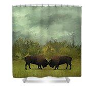 Buffalo Standoff - Painting Shower Curtain