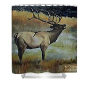 Bugling Elk Shower Curtain