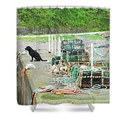 Burnmouth Harbour With Dog On Pier And Lobster Pots Shower Curtain