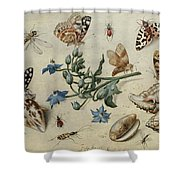 Butterflies, Clams, Insects Shower Curtain