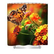 Butterfly Bliss Shower Curtain