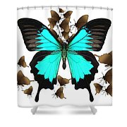 Butterfly Patterns 25 Shower Curtain