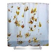 Butterfly Splash Shower Curtain