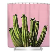 Cactus - Minimal Cactus Poster - Desert Wall Art - Tropical, Botanical - Pink, Green - Modern Prints Shower Curtain