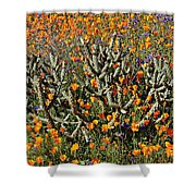 Cactus Poppies And Bluebells Shower Curtain