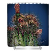 Cactus With Pink Flower Shower Curtain